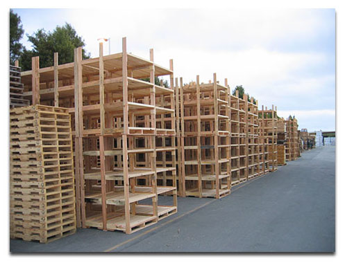 Wooden Racks Trays Tree Boxes