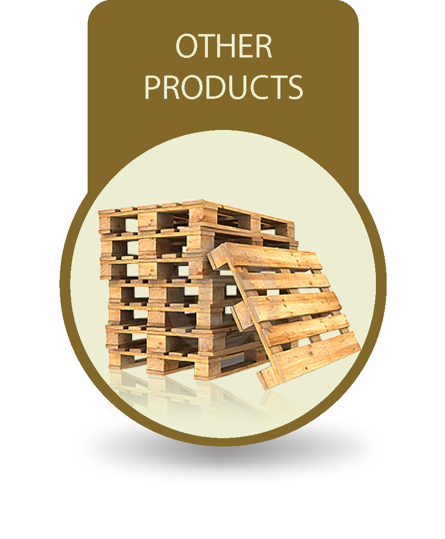 OTHER-PRODUCTS-D2 (1).png
